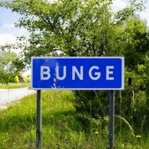 bunge_mg_3642